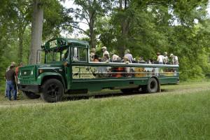 Open Air Bus